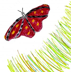 freedom for the butterfly - drawing by Harvey Dog